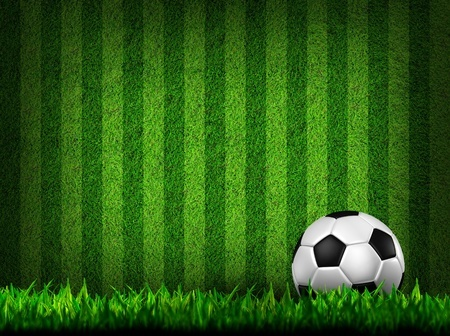 צו הרחקה לשנה ממשחקי כדורגל לאוהד שקילל בגזענות