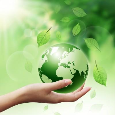 כל הדרכים להתמודד עם מפגעים סביבתיים