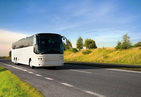 עונש קל על גרימת מוות ברשלנות: עבודות שירות לנהג אוטובוס שהתנגש בהולך רגל